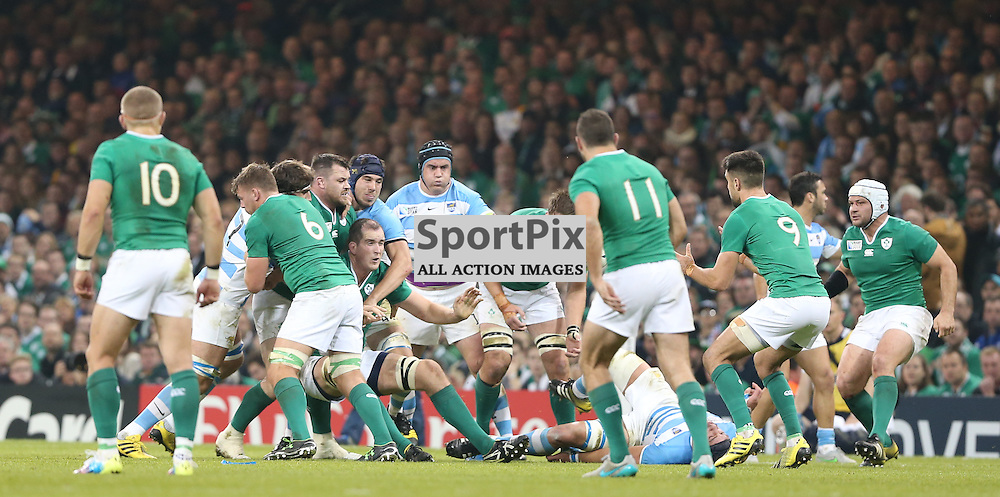 Devin Toner feeds the ball back during the Rugby World Cup Quarter Final, Ireland v Argentina, Sunday 18 October 2015, Millenium Stadium, Cardiff (Photo by Mike Poole - Photopoole)