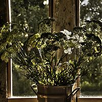 Floral arrangement by window
