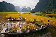 Vietnam Images-people-Ninh Binh. phong cảnh việt nam hoàng thế nhiệm