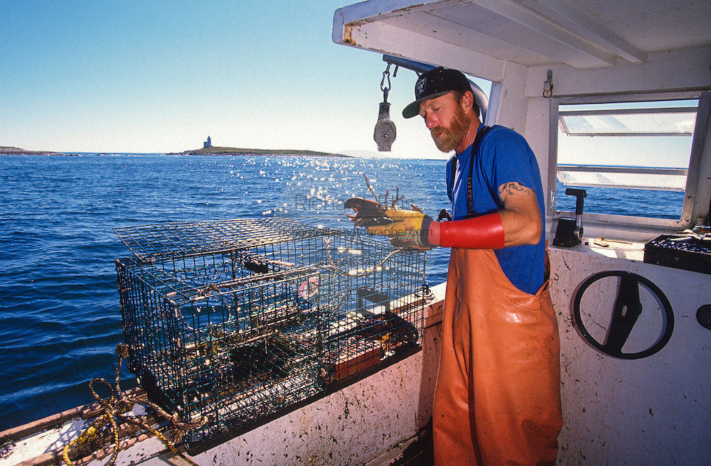 Lobster fisherman hauls his traps with Matinicus Rock Light Station in the background along the mid-coast of Maine.