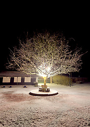 29 January 2019. Pas de Calais, France.<br /> Snow falls in the villages of Hauts de France close to Montreuil Sur Mer. <br /> Photo&copy;; Charlie Varley/varleypix.com