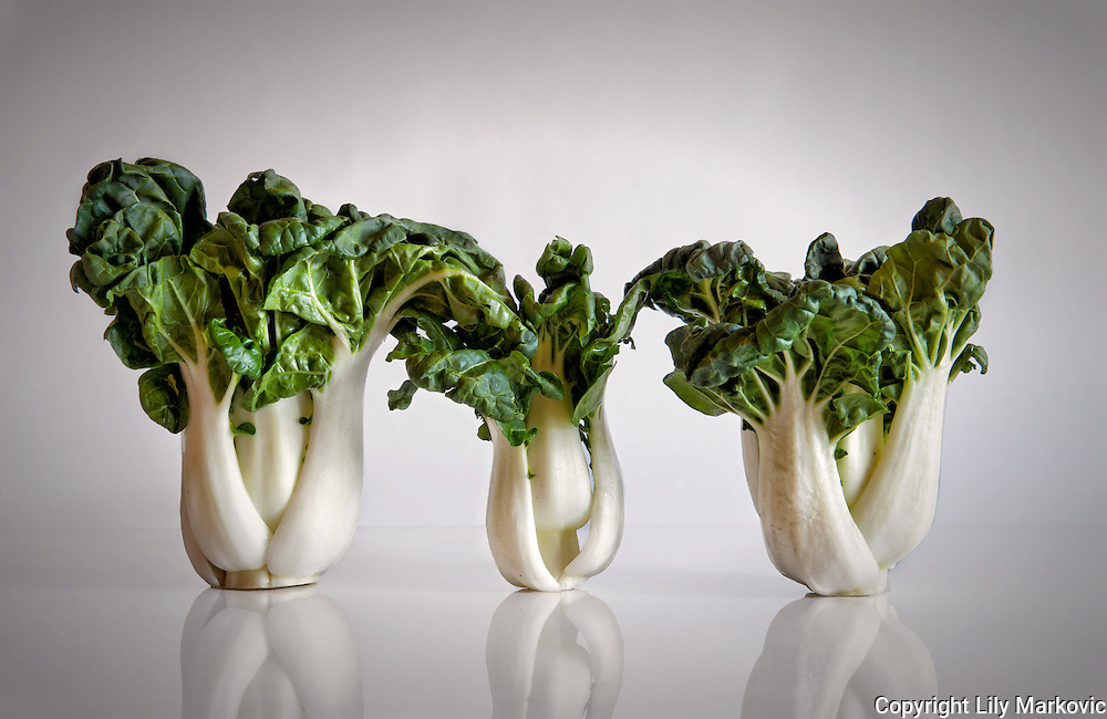 3 Chinese Cabbages on a white background