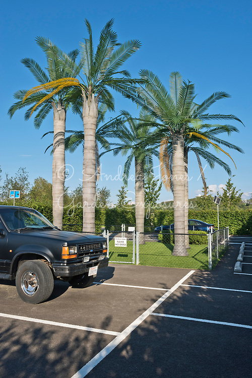 Fake palm trees, ashphalt car park, American SUV car, fenced in lawn and sign<br /> <br /> 'The Los Angeles Garden - The City of Four Ecologies' - Germany<br /> <br /> Design: Martin Kaltwasser<br /> <br /> The Garden Cabinets<br /> IGA Berlin 2017