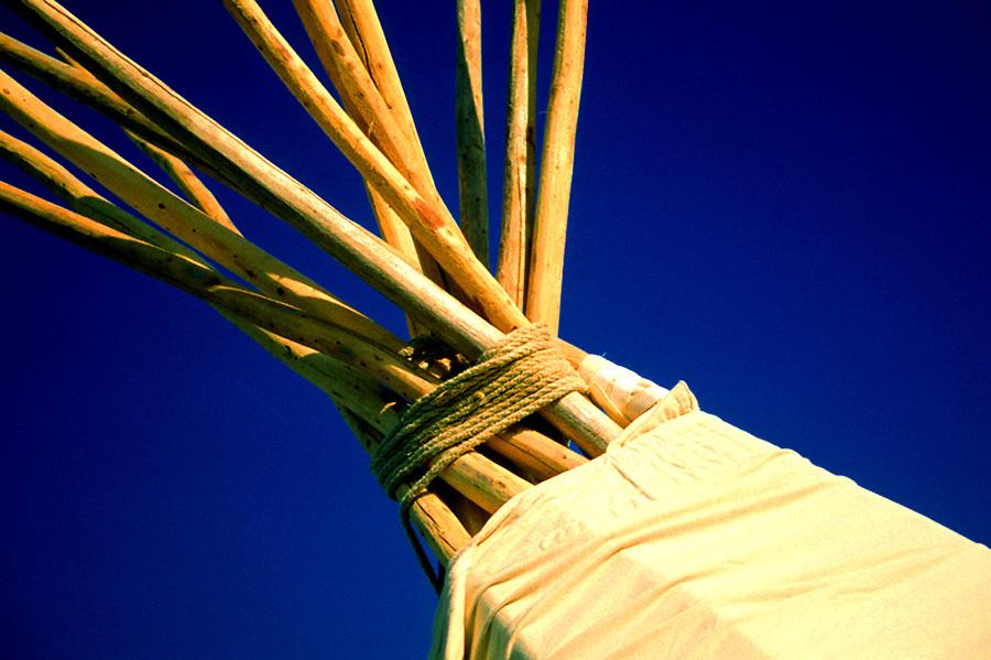 Tipi Poles against Blue Plains Sky, Pasqua First Nation, Saskatchewan