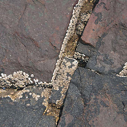 Granite Rock Close-up at Smith's Mills, Brooksville, Maine, US