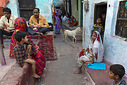 Streetscene with goat, old town, Varanasi
