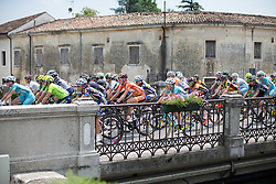 The peloton crosses a small bridge during the Giro Rosa 2016 - Stage 1. A 104 km road race from Gaiarine to San Fior, Italy on July 2nd 2016.