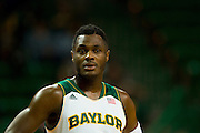 WACO, TX - JANUARY 3: Gary Franklin #4 of the Baylor Bears looks on against the Savannah State Tigers on January 3, 2014 at the Ferrell Center in Waco, Texas.  (Photo by Cooper Neill) *** Local Caption *** Gary Franklin