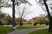 USA, Massachusetts, Boston. Boston Public Garden