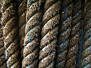a coil of hawser rope on a Washington State Ferry showing repeating lines of thick strands making up the rope coils. The rope is well used showing signs of wear. Blue strands show a different material in some rope strands.