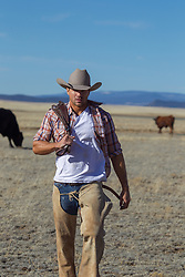 hot cowboy walking on a cattle ranch