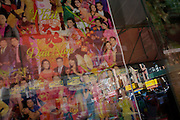 Vietnamese magazine covers and modern Chinatown in Manhattan, New York City.