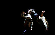 MEN IN MOTION<br /> curated by Ivan Putrov<br /> at The Lodz Grand Theatre, Poland<br /> 19th May 2015 <br /> <br /> rehearsals<br /> as part of the 23rd Łódź Ballet Festival 2015<br /> <br /> <br /> Daniel Proietto<br /> Ivan Putrov<br /> <br /> <br /> 'We two boys ' / Daniel Proietto & Ivan Putrov<br /> Choreography: Daniel Proietto/ Music: Alexandre Desplat<br /> <br /> <br /> Photograph by Elliott Franks <br /> Image licensed to Elliott Franks Photography Services