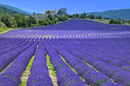 Provence France, Europe