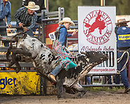 2017 ESR Xtreme Bulls