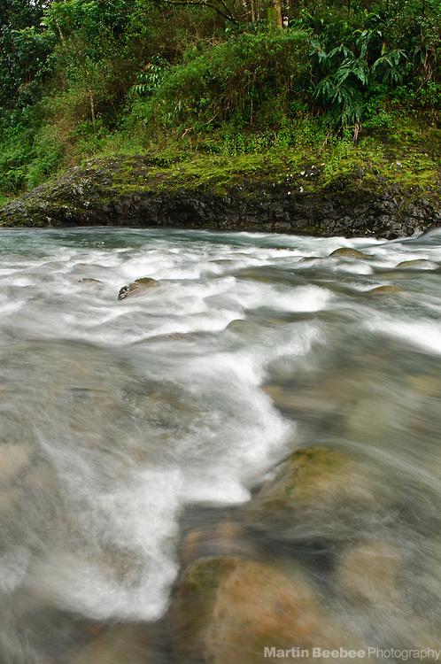 Wailua River, Keahua Arboretum, Lihue-Koloa Forest Reserve, Kauai, Hawaii