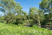 Fluss Eder, Landschaft, Edertal bei Bad Wildungen, Nordhessen, Hessen, Deutschland | river Eder, landscape Eder valley near Bad Wildungen, Hesse, Germany