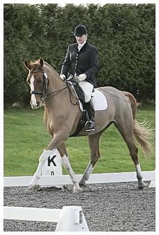 Affiliated British Dressage at Sheepgate Equestrian Centre.Saturday 24-1-2009