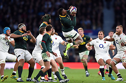 Elton Jantjies of South Africa claims the ball in the air - Mandatory byline: Patrick Khachfe/JMP - 07966 386802 - 03/11/2018 - RUGBY UNION - Twickenham Stadium - London, England - England v South Africa - Quilter International
