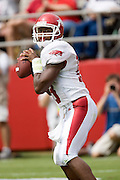 Arkansas Razorbacks quarterback Robert Johnson looks for a receiver during a 24 to 13 loss to the Alabama Crimson Tide on September 24, 2005 at Bryant-Denny Stadium in Tuscaloosa, Alabama..Mandatory Credit: Wesley Hitt/Icon SMI