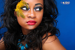 Beauty image with Feathers, beautiful colors and Accesories<br />