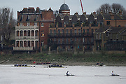 "London. United Kingdom,  Both crews pass the ""White Hart"" during the 2017. Oxford University, Annual Trial Eights, raced over the Championship Course, Putney to Mortlake. River Thames, <br /> <br /> Wednesday  06/12/2017<br /> <br /> [Mandatory Credit:Peter SPURRIER Intersport Images]<br /> <br /> OUBC Crew Names. <br /> STABLE White Shirts.<br /> Bow. Jonathan Olandi<br /> 2. Charles Buchanan<br /> 3. Will Cahill<br /> 4. Alexander Wythe<br /> 5. William Geffen<br /> 6. Anders Weiss<br /> 7. Iain Mandale<br /> Stroke. Vassilis Ragoussis<br /> Cox. Zachary Thomas Johnson<br /> <br /> STRONG Black Shirts<br /> Bow. Luke Robinson<br /> 2. Angus Forbes<br /> 3. Nicholas Elkington<br /> 4. Benedict Aldous<br /> 5. Tobias Schroder<br /> 6. Joshua Bugajski<br /> 7. Claas Mertens<br /> Stroke. Felix Drinkall<br /> Cox. Anna Carbery"