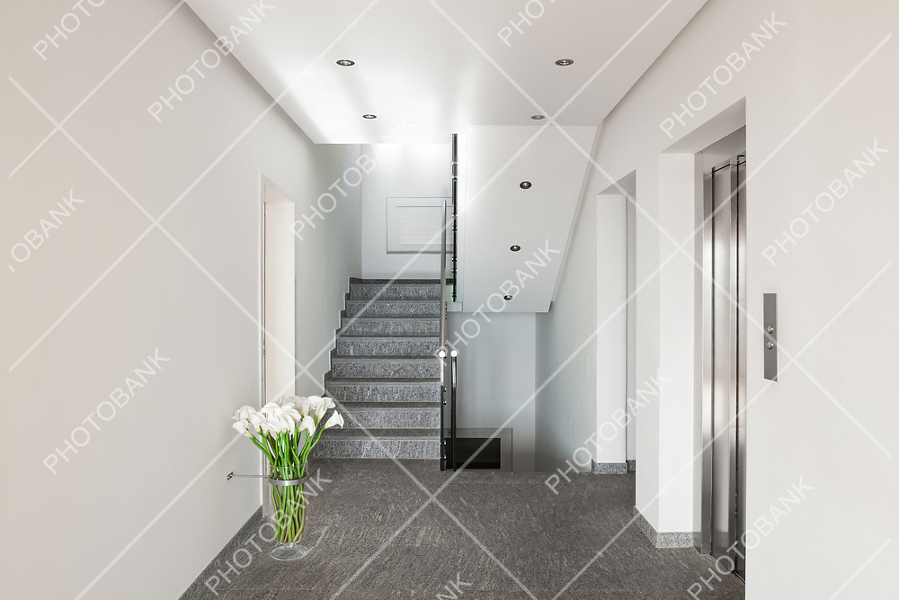 Interior of a modern apartment building, corridor with elevator