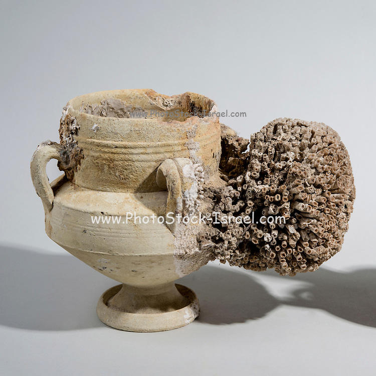 An Islamic Terracotta vase with 4 handles, strainer and spout 9th century CE. Found in the western Mediterranean sea. The spout is covered with a large coral