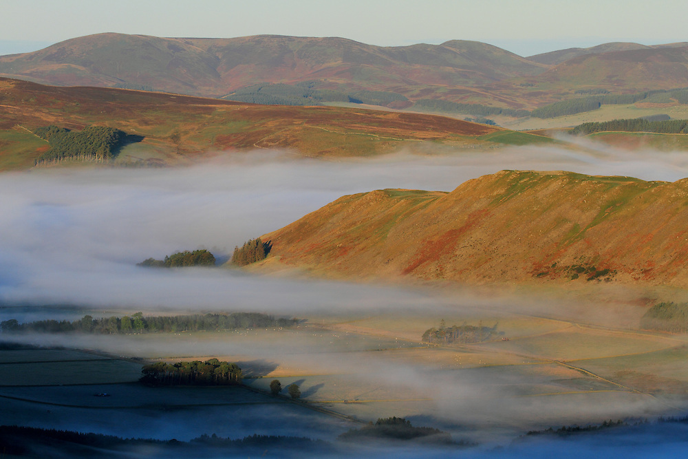 Morning autumnal mist in the Valley between Cademuir Hill & the head of the Manor Valley in Peebleshire, Scottish Borders