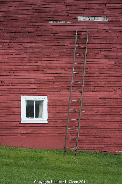 Red Barn with Ladder in Morrisville, Vermont