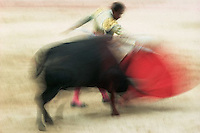 Pamplona, Spain --- A bull charges a matador in bullfight taking place as part of the San Fermin fiesta in Pamplona, Spain.  The city has become well known for the running of the bulls. --- Image by © Owen Franken/CORBIS