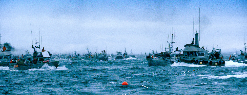 Combat fishing for salmon off the Egigik river in Alaska.