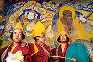 Some child monks having fun during the Thiksey Festival in Ladakh, J & K, India