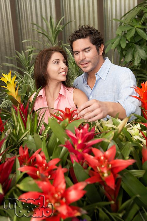 Couple Choosing Plants at a Nursery