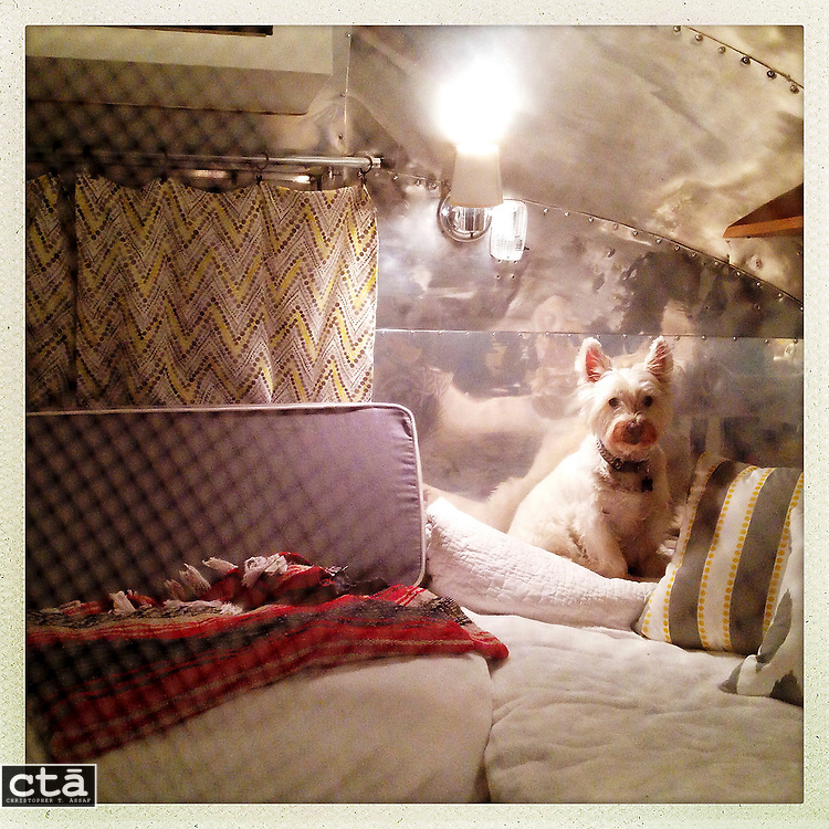 Cooper, Ethel the Airstream. May 30, 2014.<br /> <br /> Photo by Christopher T. Assaf<br /> www.ctassaf.com<br /> chris@ctassaf.com<br /> &copy; Christopher T. Assaf / All Rights Reserved / 2014
