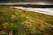 Rough surf from the Irish Sea in stormy weather forces it's way into the narrow cove of Porth Trecastell (Cable Bay) West Anglesey, Wales. On the windswept headland, Sea Pink (Thrift) blows amongst long grass covering the burial mound of Barclodiad Y Gawres,