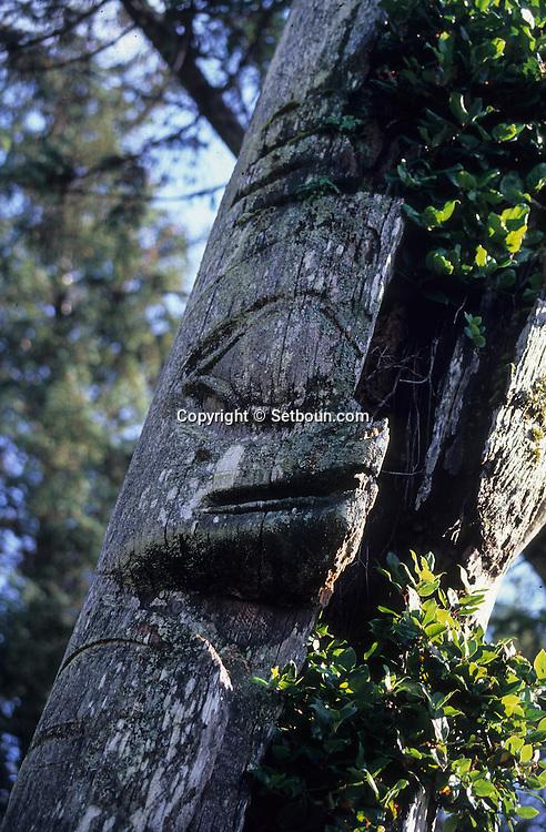 Canada. Queen Charlotte islands. Skedans, ruins of an  - Haida -  Indian village - . Queen Charlotte islands.    Canada   /  Skedans, reste d'un village indien Haida, île de La reine Charlotte  /  -   Vue aérienne de l'archipel de Haida Gwaii (les Iles de la Reine Charlotte) situé au large de la côte ouest de la Colombie Britannique, et au sud de la frontière alaskienne.    Canada  /      L0007199  /  R00314  /  P108721 +