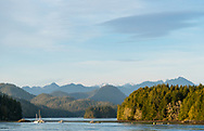 Late afternoon light falls across forest and mountains of Meares and Vancouver Island, seen from Tofino, British Columbia