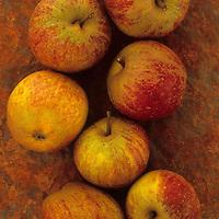 Apples on rusty sheet