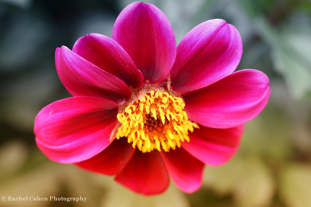 &quot;Turning Me Upside Down&quot;<br />