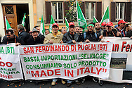 "Roma 24 Novembre 2009.Ministero dell'Agricoltura.Gli agricoltori della Cia Confederazione italiana agricoltori manifestano per chiedere al governo interventi incisivi a favore di un settore messo in ginocchio dalla crisi economica..Rome 24 November 2009.Ministry of Agriculture.Farmers in the Italian Farmers Confederation Cia appear to demand the government far-reaching measures in favor of an industry brought to its knees by economic crisis..the banner reads: Stop imports ""wild"".consume only product  ""Made in Italy"""