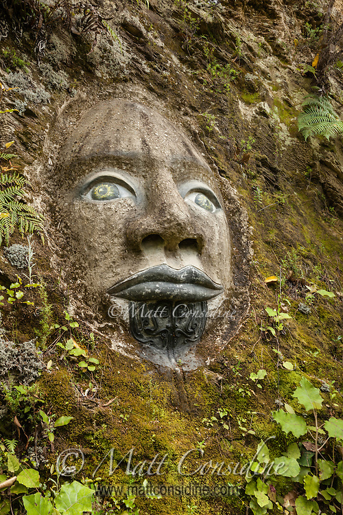 Maori face in relief on rock. (Photo by Travel Photographer Matt Considine)