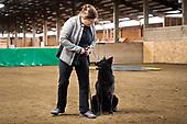 Annie & Karma Belgian Shepherds & Christina Kilbourn