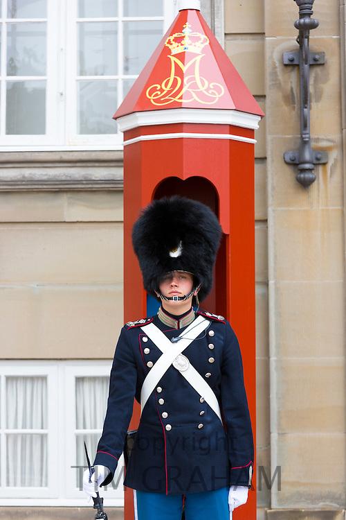 Royal Guard, Den Kongelige Livgarde, in uniform at sentry box at Royal Amalienborg Palace, Copenhagen, Denmark