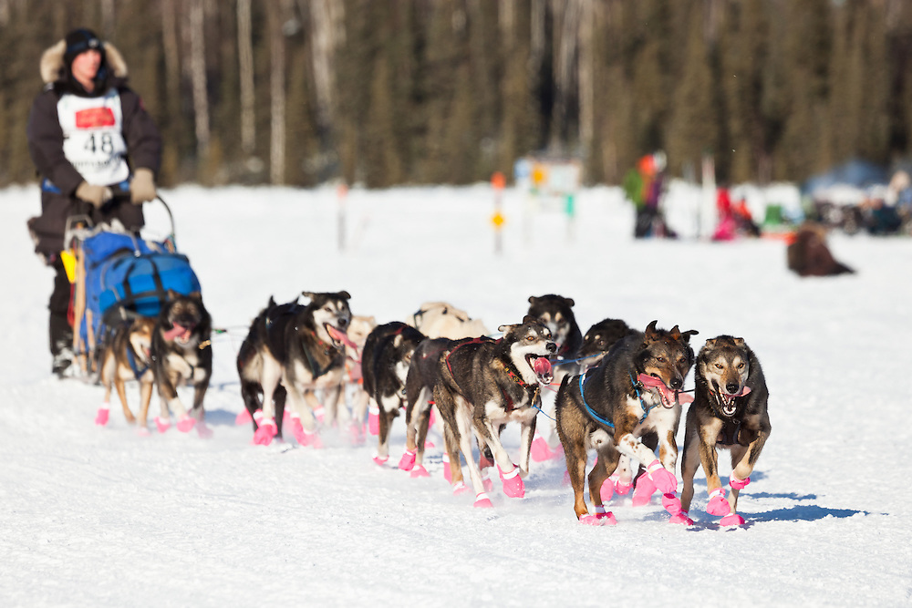 Musher Cain Carter competing in the 39th Iditarod Trail Sled Dog Race on Long Lake after leaving the Willow Lake area at the restart in Southcentral Alaska.  Afternoon.