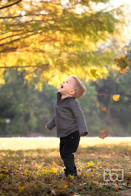 Child plays in the colorful fall leaves at  a park in Springfield, MO.