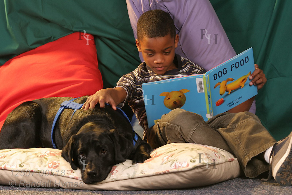 Third-grade African American boy reads Dog Food book to black lab in elementary school library; Kirkwood, Missouri