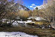 Snow Covered Ground and a River Running Through at Convict Lake