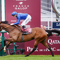 Wild Illusion (J. Doyle) Total Prix Marcel Boussac Criterium Des Pouliches Gr.1 in Chantilly 01/10/2017, photo: Zuzanna Lupa