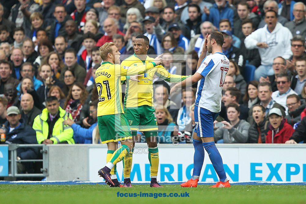 Martin Olsson of Norwich is not impressed with the playacting of Glenn Murray of Brighton &amp; Hove Albion after the pair clash during the Sky Bet Championship match at the American Express Community Stadium, Brighton and Hove<br /> Picture by Paul Chesterton/Focus Images Ltd +44 7904 640267<br /> 29/10/2016